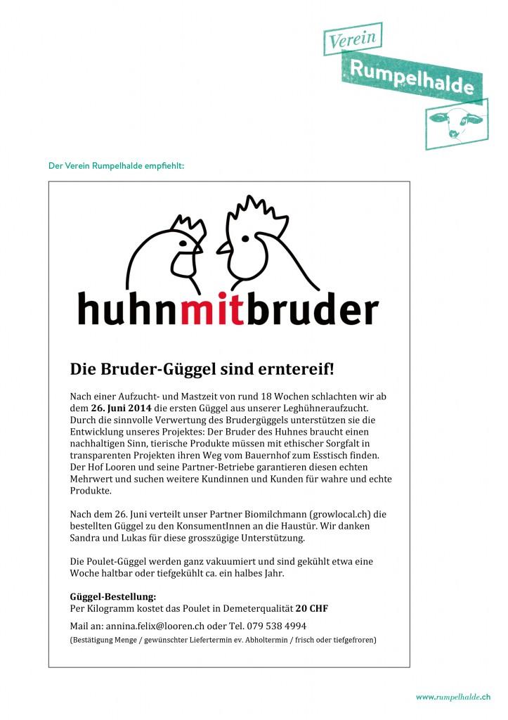 Gueggel_Flyer